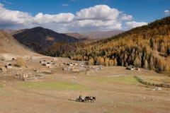 Village. A small village on the way from Kanas to Hemu. Burqin, northern Xinjiang, China. October, 2007 Stock Photography