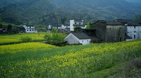 Village. It is  Wuyuan,in Jiangxi province, China Royalty Free Stock Images