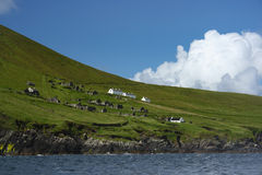Village abandonné sur la grande île de Blasket Photo stock