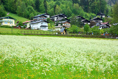 Village In Alps. Small village with meadows under Austria Alps,forest as background,Austria.Europe Royalty Free Stock Photography