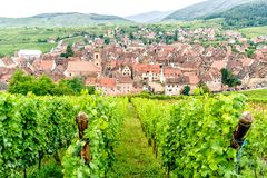 Village in Alsace Stock Photos