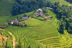 Village And Paddy Fields Stock Photography