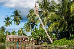 The Village of asmat tribe people on the river in Jjungle of New Guinea. Royalty Free Stock Photo