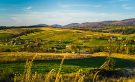 Village and autumn forest in mountains. Royalty Free Stock Photography