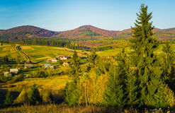 Village and autumn forest in mountains. Royalty Free Stock Images