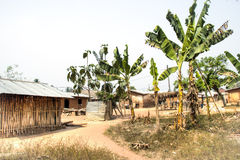Village with banana plants in Tafi Atome in the Volta Region in Royalty Free Stock Image