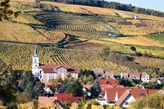 Village of Barr. With terraced vineyards in the background royalty free stock photos