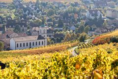 Village of Barr. With vineyards in the foreground royalty free stock image