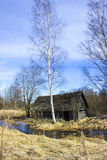 Village bath in the Creek. Abandoned village bath in the Creek, Northern Russia Stock Photography