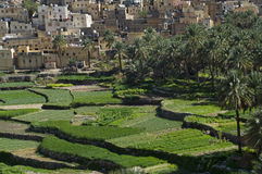 The village Bilad Sayt Stock Image