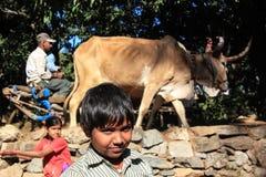 Village boys smiling royalty free stock photo