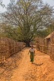Village in Burma Stock Photography