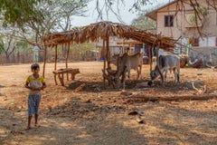 Village in Burma Royalty Free Stock Photos