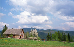 Village in carpathian mountain Stock Photos