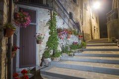 The village of Castelluccio di Norcia at night. In summer Stock Photo