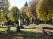 Village cementery in autumn sunny day. With bench graves and vault and golden lime trees Royalty Free Stock Photography