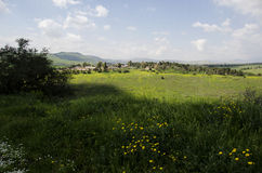 Village in center of meadow Stock Image