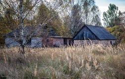 Village in Chernobyl zone Royalty Free Stock Photos