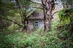 Village in Chernobyl zone Stock Images