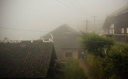 Village chinois dans le brouillard photos libres de droits