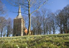 Village church, spring flowers. A small church of Cisowo, Poland. Low perspective, spring flowers in the grass Royalty Free Stock Photo