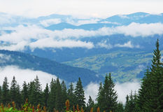 Village in cloud, mountains, Carpathians, Ukraine Royalty Free Stock Images