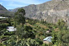 Village in the Colca Canyon of Peru Stock Photo