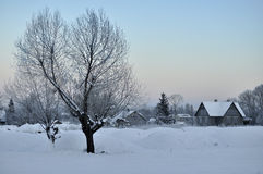 A village covered with snow Royalty Free Stock Photos