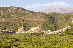 Village Cretan perched on a hill among the olive tree Royalty Free Stock Images