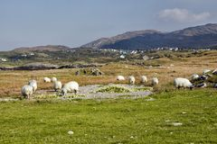 Village d'Eyeries, péninsule de Beara, Irlande Photos stock