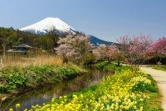Village d'Oshino Hakkai avec Sakura et Fujisan photographie stock