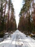 Village dans la neige Photos stock