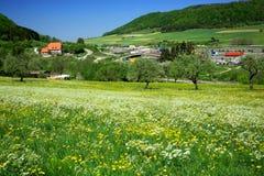 Village dans les Alpes Photo libre de droits