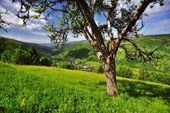 Village dans les Carpathiens Images stock