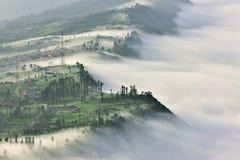 Village de Cemoro Lawang en brume de matin image stock