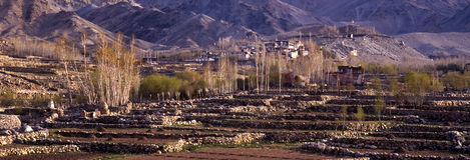 Village de Gompa, Ladakh - panorama-2 Photographie stock