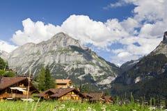 Village de Grindelwald photographie stock libre de droits