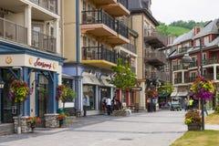 Village de montagne bleu en été, Collingwood, Canada Images stock