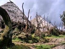 Village de montagne éthiopien intérieur Image libre de droits