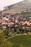 Village de Moravian par le lac avec des vignes Image stock