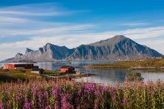 Village de pêche en Norvège Images libres de droits