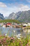 Village de pêche norvégien Reine sur un fjord, Lofoten, Nordland, N images libres de droits