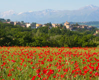 Village de pavot, Italie centrale Images libres de droits