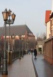 Village de poissons à Kaliningrad Images stock