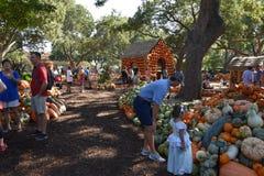 Village de potiron chez Dallas Arboretum et jardin botanique dans le Texas photographie stock libre de droits