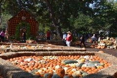 Village de potiron chez Dallas Arboretum et jardin botanique dans le Texas photos stock