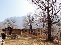 Village de radis images libres de droits