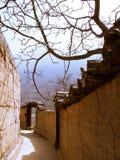 Village de radis photos libres de droits
