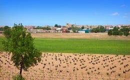 Village de San Clemente à Cuenca Espagne photographie stock libre de droits
