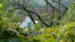Village de Saxon de jument de Copsa en Transylvanie, Roumanie Photos libres de droits